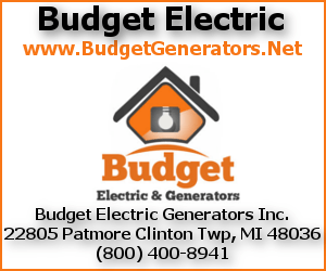 BudgetElectric.png