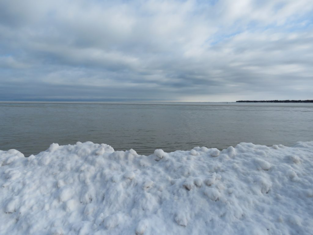 There was plenty of ice buildup along the shoreline Lake Huron, but too much open water for ideal birding.