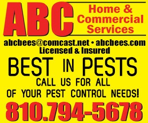 ABC-Website-Banner.jpg