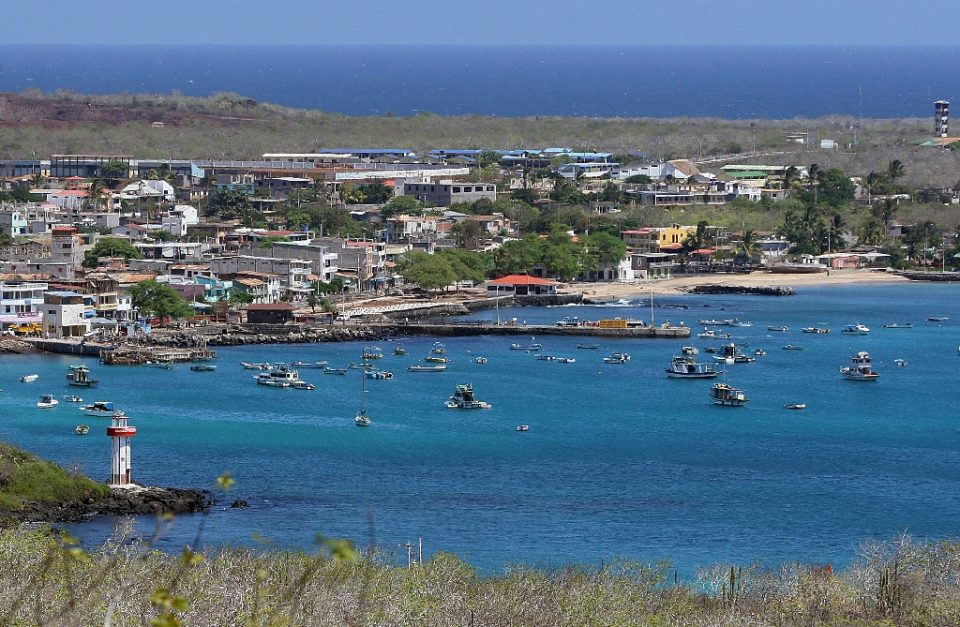Four permanent residents of the Galapagos archipelago have tested positive for the COVID-19 disease - RODRIGO BUENDIA / ©AFP
