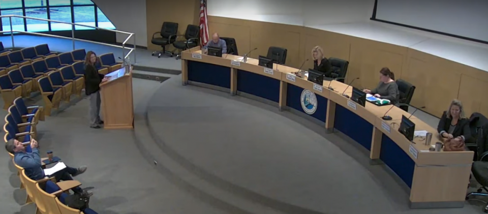 A screenshot of socially distancing practice by the Port Huron City Council, as seen on the recording of the March 23 meeting posted on YouTube.