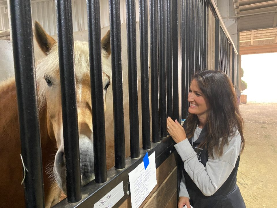 The Mount Hood Center in Oregon threw open its doors to animals displaced by raging forest fires - Cyril JULIEN / ©AFP