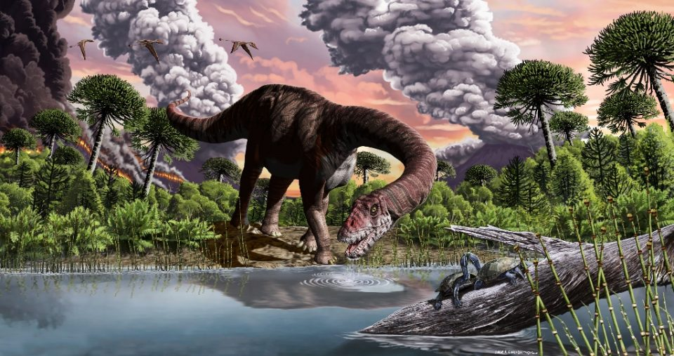 Scientists have found evidence in Argentine Patagonia of a new species of giant, leaf-eating dinosaur that lived 179 million years ago - Jorge GONZALEZ / ©AFP